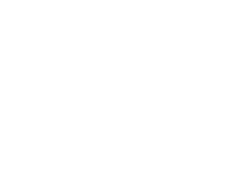 Nadační fond ČRo Světluška - logo